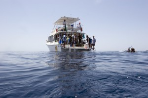 Dive Trips DDA Dhahran Dive Association